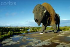 Giant buffalo in Jamestown, North Dakota The Enchanted Highway, between Gladstone and Regent, North Dakota Best described as land of the giants