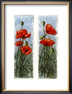 Double Poppies Posters by Franz Heigl at AllPosters.com