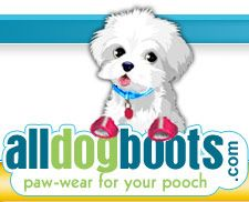 Great idea for the girls, dog shoes for the pool!!!alldogboots.com paw-wear for your pooch