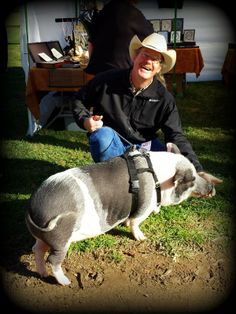 A customer's pot belly pig visits with James K. Bowden at his booth at the Jensen-Alverado Ranch Antique, Vintage, & Craft Market on 2-1-14 in Riverside, CA. #Ranch #pig #pets #Riverside