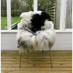 Unikt, langhåret lammeskind nr. 12 - Fri fragt. Helt exceptionel kvalitet og enestående skind. #12 Kunne du tænke dig at have netop dette skind på stolen derhjemme? Skindet er præcist det du får tilsendt så det er først til mølle. Skindets uld og underuld er exceptionelt på grund af det hårde klima på Island og fåret udviklet fantastisk uld gennem århundrede. Giver et eksklusivt cool nordic look. Str. 119x78 cm. #islandsklammeskind #lammeskind