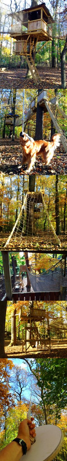 Who wants a 3 platform, two bridge, two rope swing and two zip-line treehouse?  If you were one of the very fortunate kids in Berwyn, PA, that's exactly what you got!  This project was built to replace a Super Z Zip-Line and boy, was it ever worth it.  With two zip-lines, one being over 200', many ways in and out, and a 13' launch platform for both the zip-line and rope swing, it all really comes down to an excellent way to get the kids out of your hair for a while.