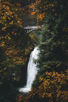 banshy: Multnomah Falls by: Nick Carnera