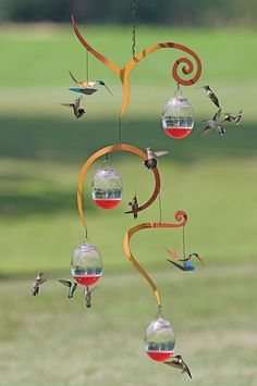 brand new concept bird feeders hummingbird see : Parrots are an attractive sight to behold plus they would bring a dash of bright color to the yard. In order to attract birds to your yard, a birdfeed. Diy Bird Feeder, Humming Bird Feeders, Humming Birds, Metal Bird Feeders, Hummingbird Garden, Hummingbird Feeder Parts, Bird House Kits, How To Attract Hummingbirds, Baby Hummingbirds