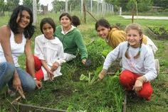 Volunteering in Argentina combines travel, professional Volunteer Program