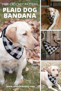 Your pooch will be stylin' in this crochet plaid hankerchief bandana! Learn this easier-than-you-thing crochet technique. #crochetforyourdog #plaidcrochet #crochetplaid #crochetfordog… More One Skein Crochet, Plaid Crochet, Crochet Winter, Diy Crochet, Blanket Crochet, Crochet Ideas, Quick Crochet Gifts, Modern Crochet Patterns, Cute Names