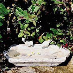 Bain d'oiseaux abreuvoir en terre cuite patine pierre ancienne. dimensions L 34 x l 20 x H 12 cm.
