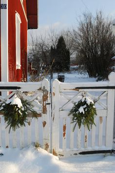 Wreathes on the barn gate
