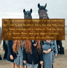 Everyone expected the Wotter's to be redheads, Gryffindors, and Quidditch stars. But only Molly, Lucy, Lily, Rose, and Hugo were redheads. And only Domi, Lily, James, Rose, and Louis played Quidditch, However, they were all in Gryffindor. Requested...