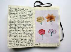 Journal E-11 | Flickr