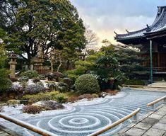 Bild könnte enthalten: Baum, im Freien und Natur Zen Rock Garden, Sidewalk, Instagram, Outdoor, Tree Structure, Side Walkway, Walkway, Walkways, Pavement
