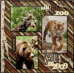 @ the zoo - Scrapbook.com