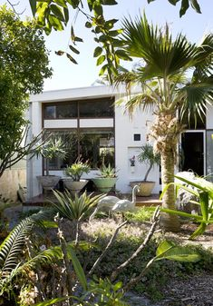 BEST OF Australian Homes 2013 · Mark and Christine Baxter and Family - The Design Files Patio Design, Exterior Design, House Design, Chair Design, Design Design, Furniture Design, Garden Design, Design Ideas, Patio Bohemio
