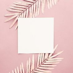 Pink palm leaves with blank frame on pink background Free Photo Flower Background Wallpaper, Collage Background, Framed Wallpaper, Graphic Wallpaper, Pastel Background, Background Images, Blank Background, Aztec Wallpaper, Beauty Background