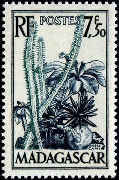 Collecting by Engraver - Stamp Community Forum - Page 19 Madagascar 1954 engraved by Cami