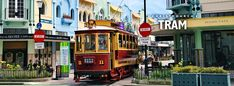 One of the top attractions in Christchurch, the historic tram offers a unique way to explore the changing city.