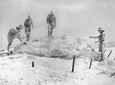 Men of the Highland Light Infantry (City of Glasgow Regiment) camouflaging a gun position at Mersa Matruh, Egypt, 28 May 1940.