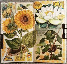ideas for a level art sketchbook inspiration fashion des A Level Art Sketchbook, Sketchbook Layout, Arte Sketchbook, Sketchbook Inspiration, Sketchbook Ideas, Natural Form Art, Art Alevel, Art Diary, Collage Artists