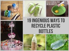 19 Ingenious Ways To Recycle Plastic Bottles