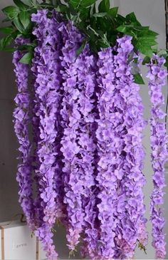 70 Purple Silk Wisteria Hanging Flowers Garland 3 flower heads with leaves, Wisteria Vine Wedding Backdrop Wisteria Hanging Flowers Material: Silk Color: Purple Total Length: 70 inches Flower: branches with leaves, each flower head 39 Hanging Flowers Wedding, Flower Garland Wedding, Flower Head Wreaths, Paper Flower Garlands, Wedding Cake Fresh Flowers, Paper Flower Backdrop, Wedding Ceremony Decorations, Flower Decorations, Paper Flowers