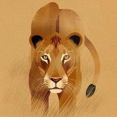 Animal Illustration by Dieter Braun #wildlife #animals #drawing #lion #lionkillingdentist #biggamehunting #nobiggamehunting
