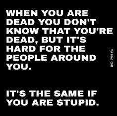 Being dead is like being stupid
