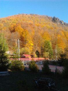 Lepsa - Romania