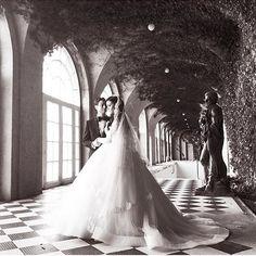 fairness  wedding dresses lace open back 2016-2017