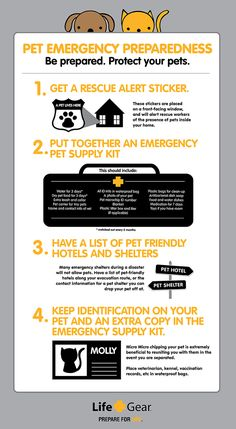 Pet Emergency Preparedness #pet #pets I need to do this!