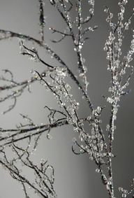 How to make Iced Branches and save tons of money - great for bouquets or to put in-between branches on your tree