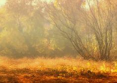 Autumn time by Natalia Flora on 500px