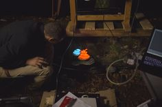 Bioluminescent Forest : champignon http://positivr.fr/bioluminescent-forest-projections/