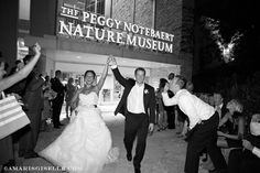 Nature Museum Entrance | #eventspace #weddings