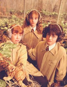 Harry Potter, Ron Weasley and Hermione Granger. Herbology at Hogwarts. Harry Potter World, Harry Potter Trio, Mundo Harry Potter, Harry Potter Universal, Harry Potter Movies, Harry Potter Fandom, Harry Potter Mandrake, Hp Movies, James Potter