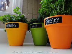 DIY Faux Chalkboard Herb Pots tutorial - an alternative to using chalkboard paint to customise your pots or make as gifts. | The Micro Gardener