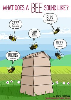 #Infographic Bees: What Noises Do Animals Make In Other Languages?