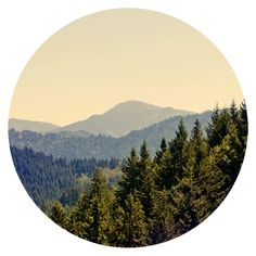juli11_07.jpg (JPEG-Grafik, 850x850 Pixel) — Designspiration