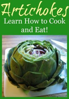 Crock-Pot Cooking Basics by Editors of Favorite Brand Name Recipes Spiral-bound - Get Cooking Club How To Cook Artichoke, Artichoke Recipes, Roasted Artichoke, Crock Pot Cooking, Cooking Recipes, Cooking Ribs, Cooking Pasta, Keto Recipes, Vegetarian Recipes