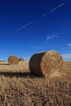 haybales by shelkare