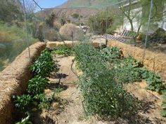 Permaculture Planning in the high desert YouTube High Desert