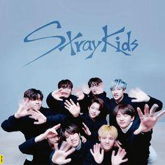 Stray Kids : V LIVE