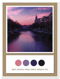 Color Card 011: Rose, Wisteria, Royal Purple, Midnight Sky - The Inspired Bride