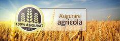 oneRCA.ro - Asigurarea agricola - Compara ofertele de asigurari RCA online si alege-o pe cea mai ieftina! Noi iti livram asigurarea RCA gratuit, oriunde in tara!