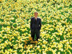 """A Casa Mistura Fina promove mais uma edição do Cine Picnic, e desta vez o filme exibido é """"Peixe Grande e Suas Histórias Maravilhosas"""", de Tim Burton."""