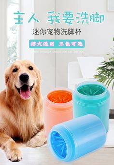 Pet foot washing cup dog corgi puppy golden retriever paw dog foot cleaning teddy foot washing artifact rabbit paw washing device Cleaning Buckets, Pet Paws, Rainy Weather, Dog Walking, Clean House, Washer, Best Dogs, Your Dog, Dog Cat