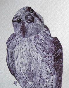 Wanderfalke - Original von *zeitgenössische kunst von maria-mercedes* auf DaWanda.com