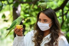 (Aug 02 2020) Farrah Maddox, aged 17, feeds parakeets in St James's Park in London. (Photo by Kirsty O'Connor/PA Images via Getty Images)