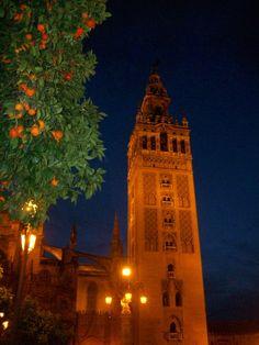 I want to see my orange trees again. Man, do I miss Spain.