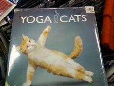 Yogacats