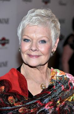 haircuts for over 60 pixie cut for 70 judi dench 1754 | 02a99d1754eb917c2eeea673d0d4bc90 silver haired beauties silver style
